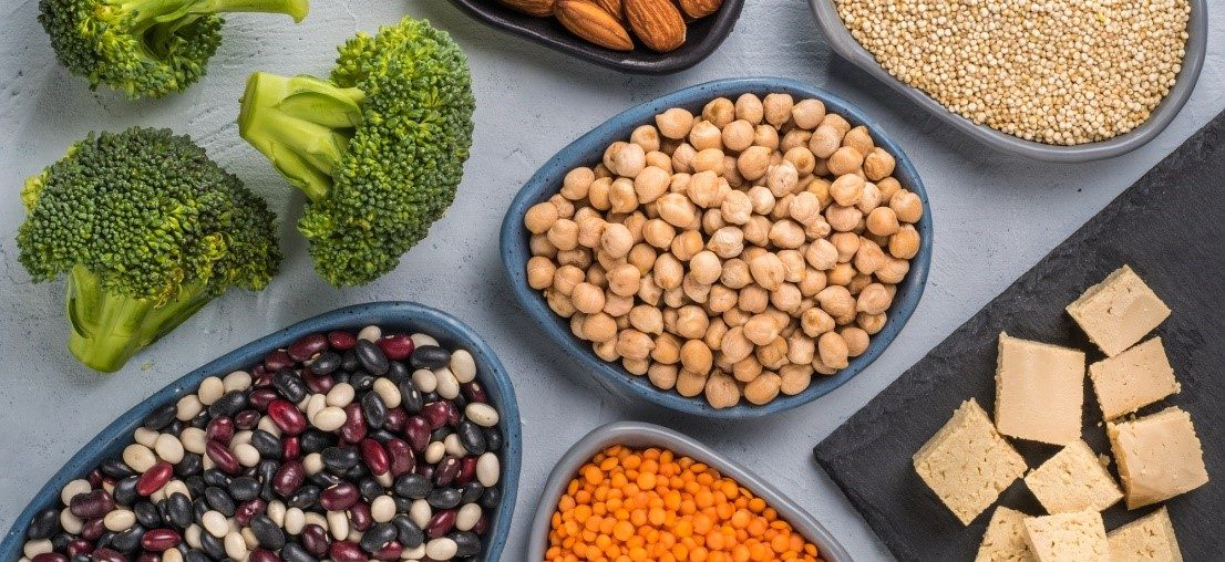 9 Easy Vegan Protein Sources Everyone Should Know on blog.fit2gomeal.com