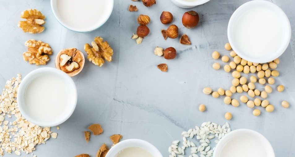 Dairy vs. Non-Dairy Milk: Which One Is Right for You? on blog.fit2gomeal.com